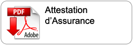 dl_attestation_assurance