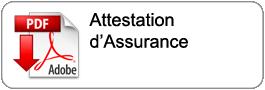 dl_attestation_assurance